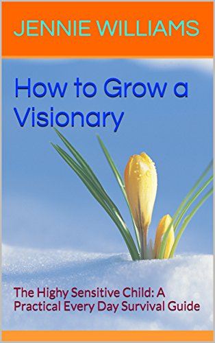 visionary-book-cover