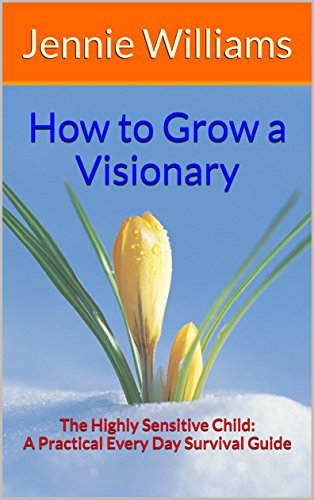 visionary-book-coverjpg